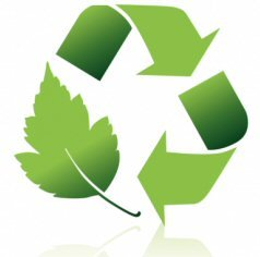RainCatcher Blog - Should your business 'go green' for profit?
